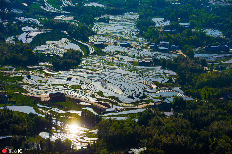 Aerial-Photos-Show-Landscape-of-Terraced-Fields-In-SW-China-3