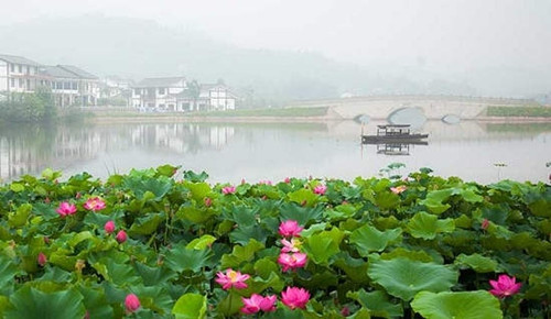 6-destinations-to-discover-chongqing-best-scenery-in-early-summer-3