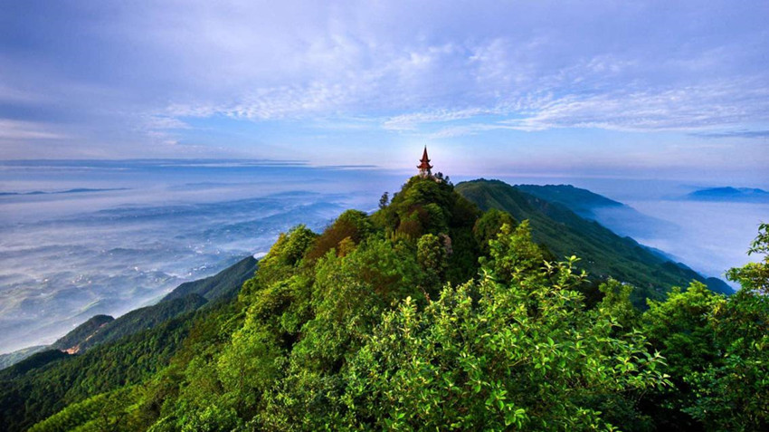 walking-in-the-tea-mountain-and-bamboo-forest-6