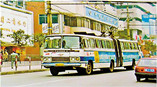 the-evolutionary-history-of-chongqing-bus